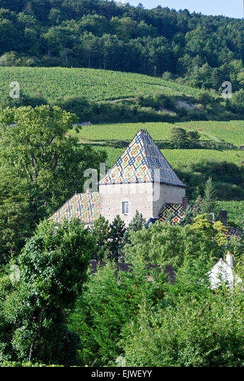 Polychrome glazed tile roof of the Château de Santenay, Santenay, Côte-dOr, France - Stock Image