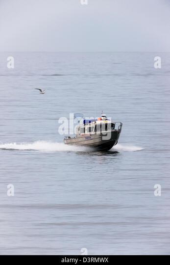 Angler fish deep sea stock photos angler fish deep sea for Alaska deep sea fishing