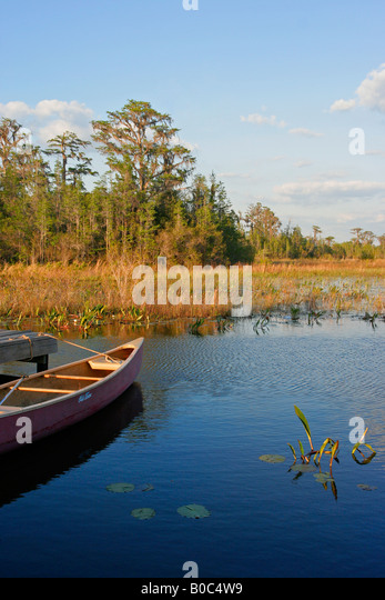 Canoe at camping dock in Okefenokee National Wildlife Refuge swamp - Stock Image