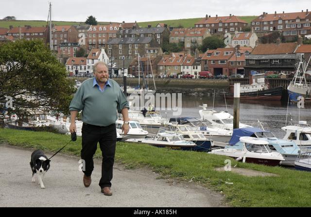 UK, England, Whitby, Whitby Harbour, boats, man, dog, walking, - Stock Image