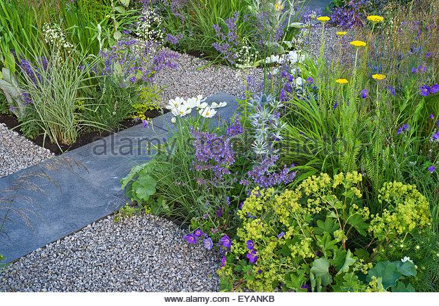 Gravel garden stock photos gravel garden stock images for Blue slate garden designs