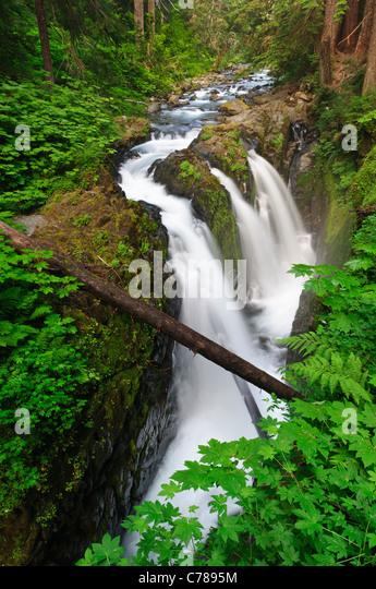 Sol Duc Falls, Olympic National Park, Washington. - Stock Image
