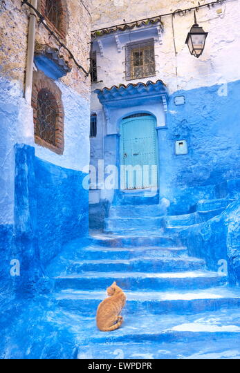 Chefchaouen (Chaouen). Is noted for its buildings in shades of blue. Morocco - Stock Image