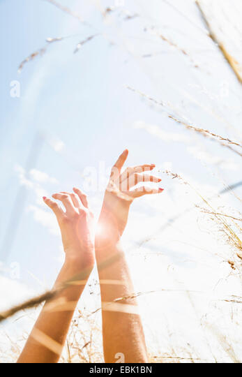 Young womans hands amongst long grass - Stock Image