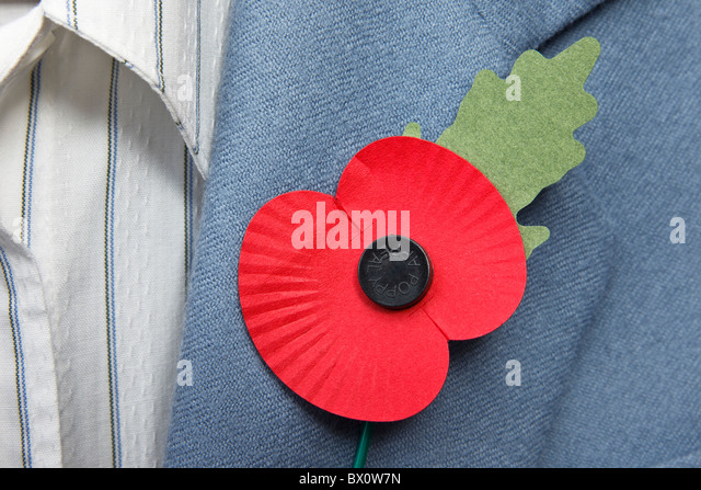 Remembrance Remembrance Poppy Poppies Stock Photos