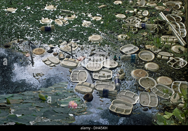 Water pollution Plastic plate wastes floating in lake at Tamilnadu India - Stock Image