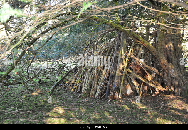 Den made by children in wood in Sherborne Oxfordshire - Stock Image