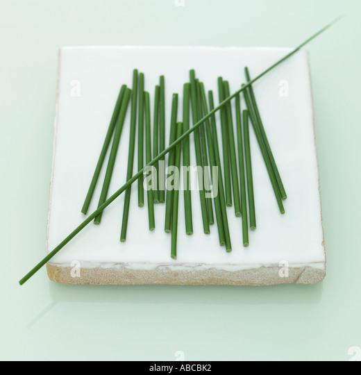 Chives - one of a series of similar herb images - Stock Image