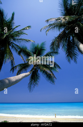 Dominican Republic beach palm trees woman in distance - Stock Image