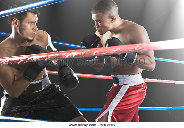 Boxers in action - Stock Image