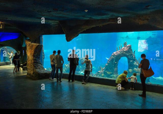 Wroclaw, Poland, Aquarium in Afrykarium in Wroclaw Zoo - Stock Image