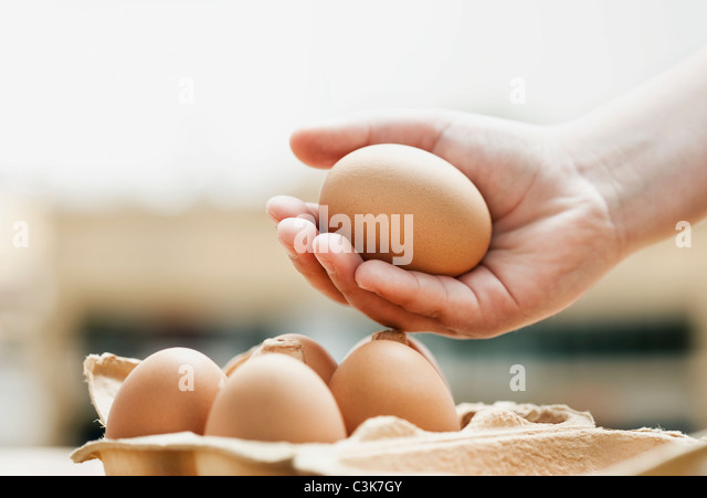 Germany, Cologne, Human hand holding eggs, close up - Stock-Bilder