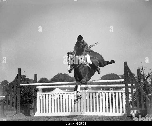 Show Jumping - Ascot Jumping Show - Stock Image