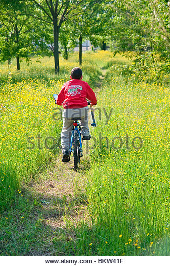 Little Boy On Bike On Stock Photos & Little Boy On Bike On ...