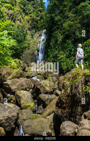 Tourist looking at the Trafalgar Falls, Morne Trois Pitons National Park, UNESCO Site, Dominica, West Indies, Caribbean - Stock Image