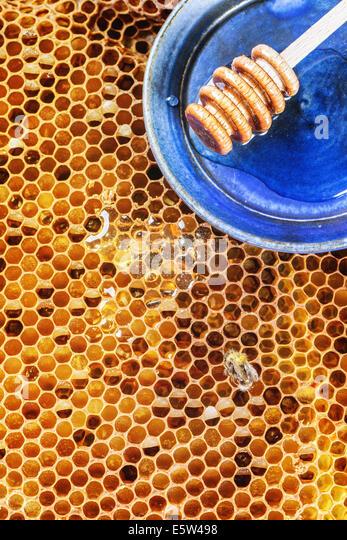 Honeycombs - Stock Image