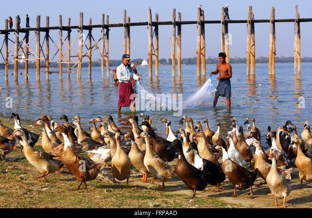 The U Bein  Bridge across the Taungthaman Lake in Amarapura, Mandalay, Myanmar (Burma) - Stock-Bilder