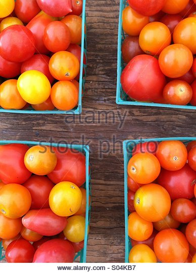 Summer Tomatoes - Stock Image