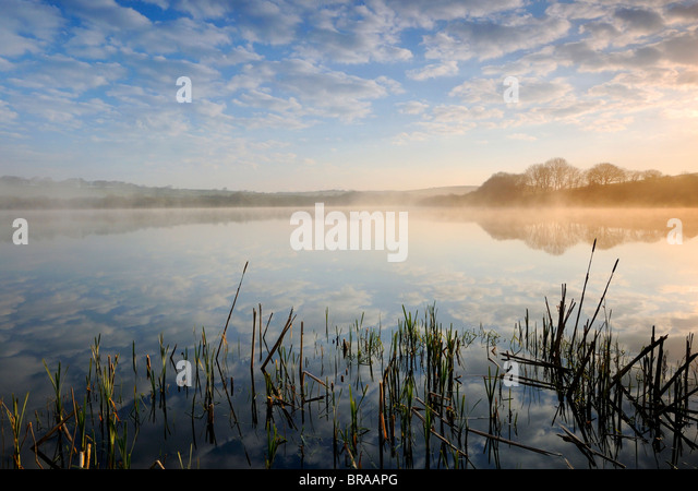 Lower Tamar Lake, north Devon / Cornwall border, UK. Early morning mist. April 08. - Stock Image