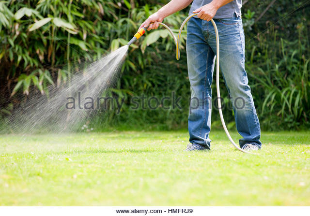 Man using hose watering green lawn yard - Stock-Bilder