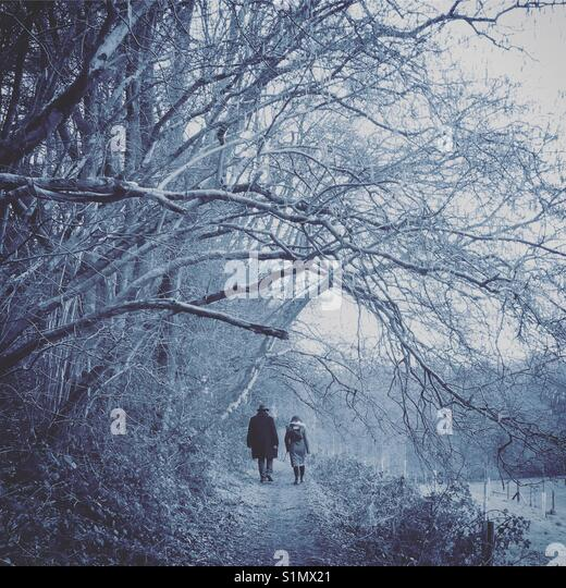 Walk in the cold forest - Stock Image