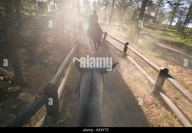 Horseback riding in Bryce Canyon National Park Utah - Stock Image
