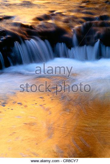 Reflections on small Escalante River, Utah, USA - Stock Image