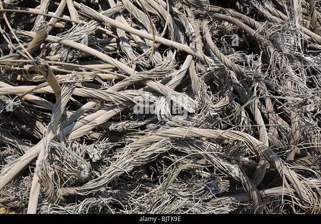 Steel cables - Stock Image