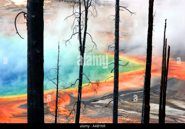 grand prismatic spring, midway geyser basin, yellowstone national park, wyoming - Stock Image