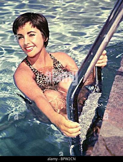 ELIZABETH TAYLOR ACTRESS (1955) - Stock-Bilder