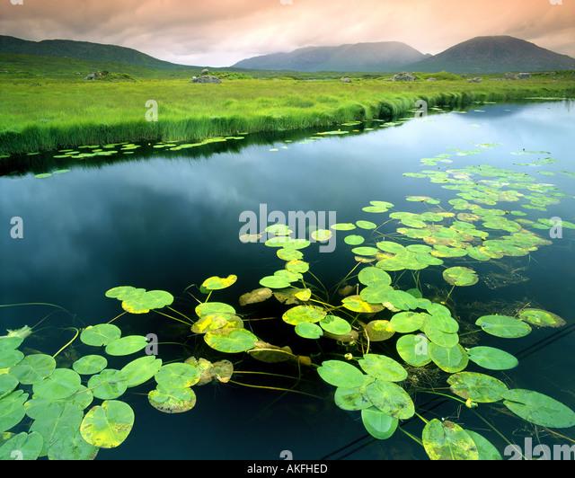 IE - CONNEMARA:  Ahalia River at Maam Cross - Stock Image