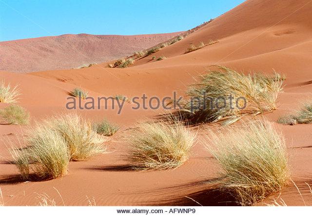 Duenen in der Wueste Namib - Stock Image