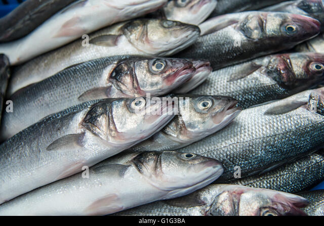 Fish scale skin stock photos fish scale skin stock for 94 1 the fish