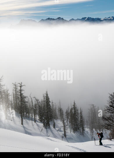 Back country skiers use synthetic skins to climb; Selkirk Mountains near remote Mount Carlyle Lodge;  British Columbia; - Stock Image