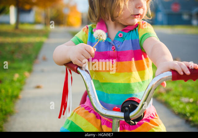 A young girl holds a dandelion while sitting on a tricycle. - Stock Image