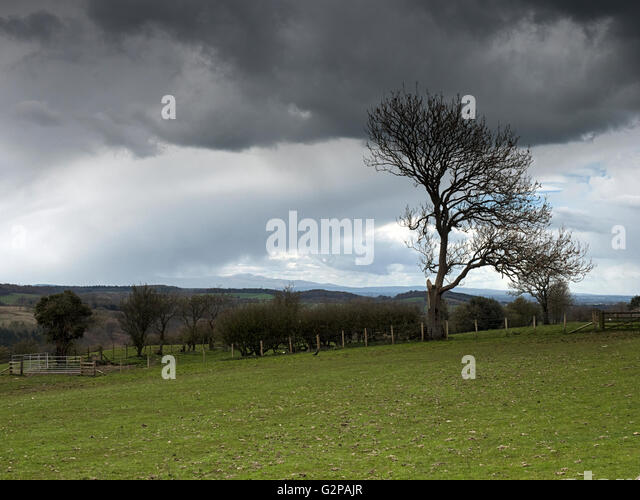 Looking towards the English Lake District from Banks East Turret on Hadrian's Wall, Cumbria - Stock Image