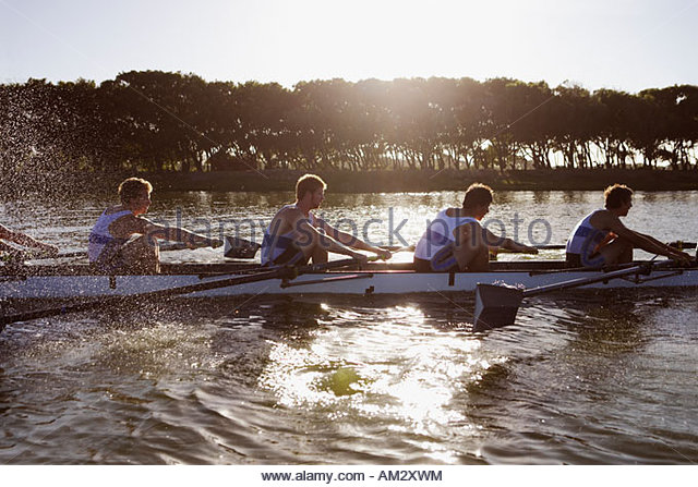 Athletes in a crew row boat midstroke - Stock Image