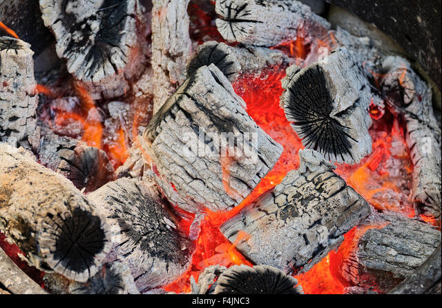 campfire. Wood logs burning in camp fire firepit - Stock Image