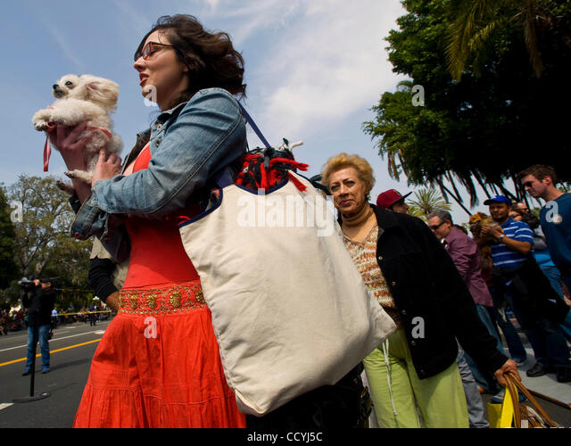 April 3, 2010 - Los Angeles, California, USA -  Pets and their owners make their way to the front of the line during - Stock Image