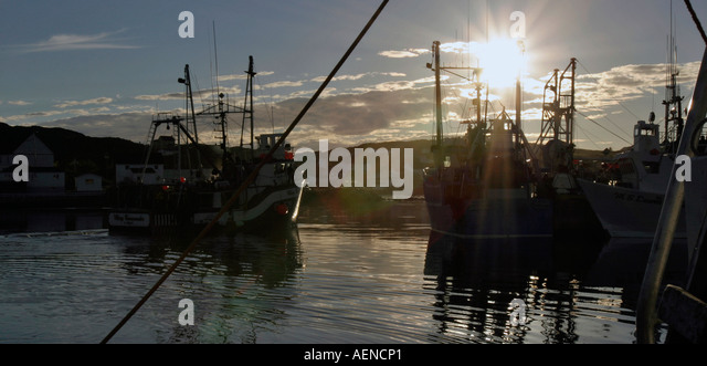 Activity at Twillingate Harbour Newfoundland Atlantic Canada - Stock Image
