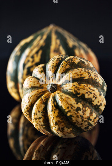 Two Harlequin Squash - Stock Image