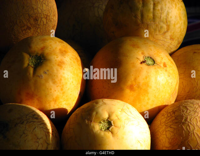 Melons - Stock Image