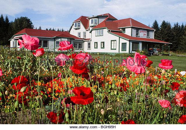 Alaska. Gustavus . Gustavus Inn. - Stock Image