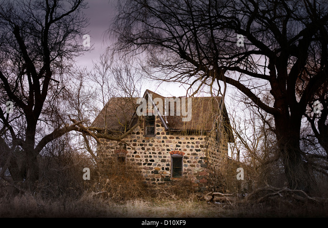 Small abandoned house in the woods - Stock Image