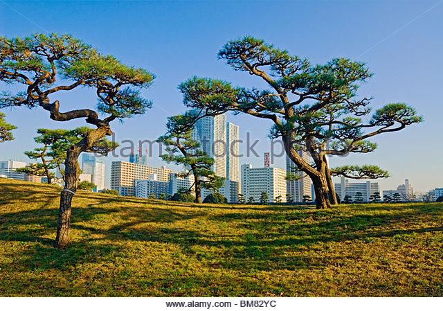 Hama Rikyu Gardens Tokyo Japan - Stock Image
