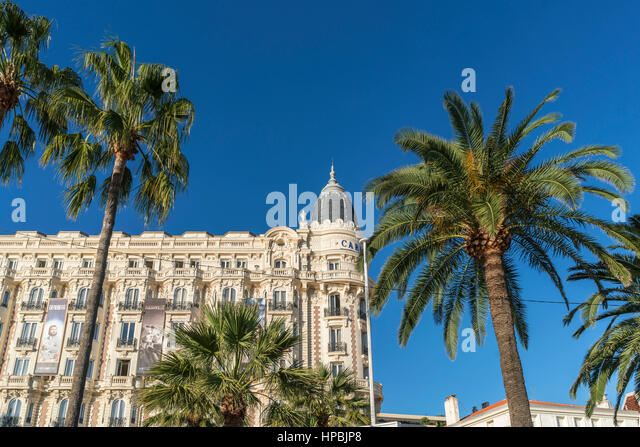 Carlton, Hotel, Facade, Promenade de Coisette,  Palm tree, Cannes, Cote d'Azur, France, - Stock Image