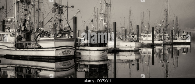Boats with fog at Newport Harbor. Oregon - Stock Image