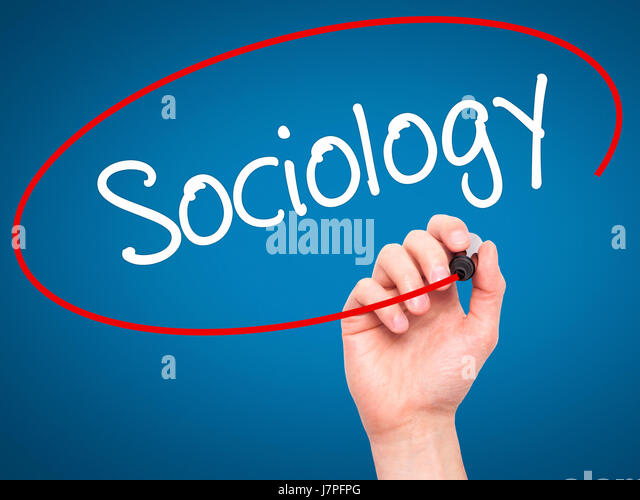 Sociology Essay and Research Paper Writing Assistance
