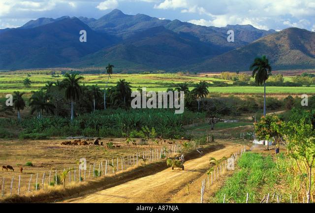 horse drawn cart in Valle de los Ingenios Trinidad Cuba - Stock Image
