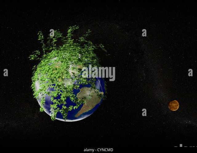 eath planet growth by plant with the moon over the stars background - Stock Image